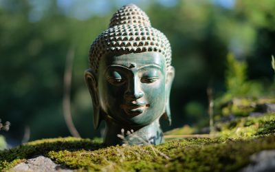 Artikel Yogakrant, Communicatie. Zomer editie 2020